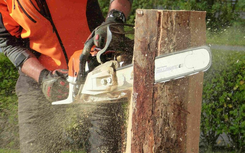 Canva---Man-Cutting-Tress-Using-Chainsaw-compressor-compressed