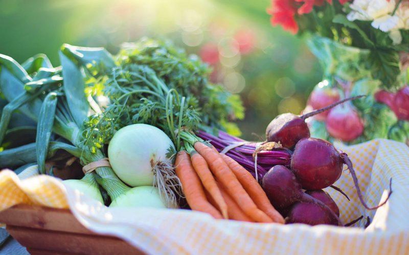 beets-carrots-close-up-533360-min